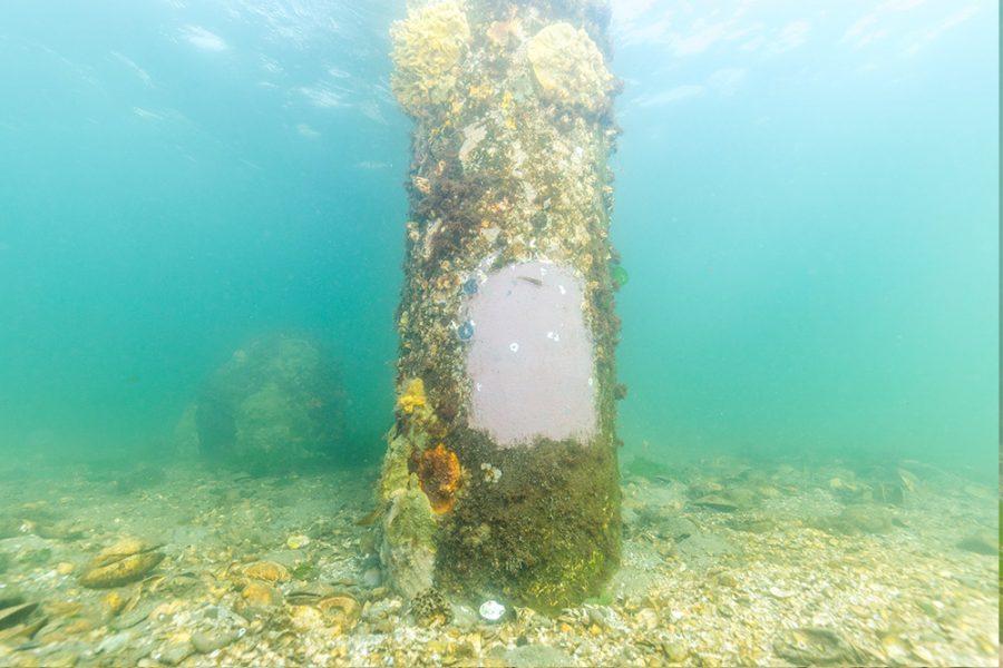 20-year-old fiberglass pilings