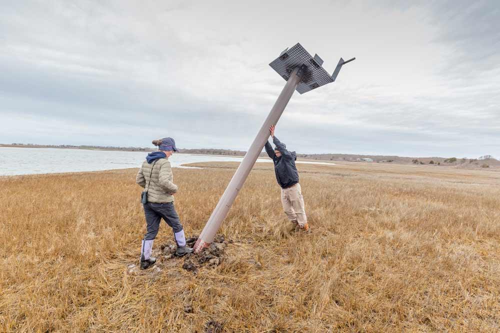 osprey nest installation data-title=