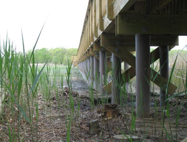 Dennis Township, New Jersey walkway pilings